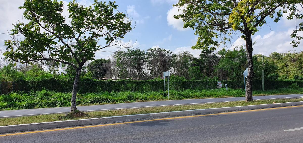 Foto Terreno en Venta en  Chetumal ,  Quintana Roo  Terreno con 100 de frente a la entrada de Chetumal