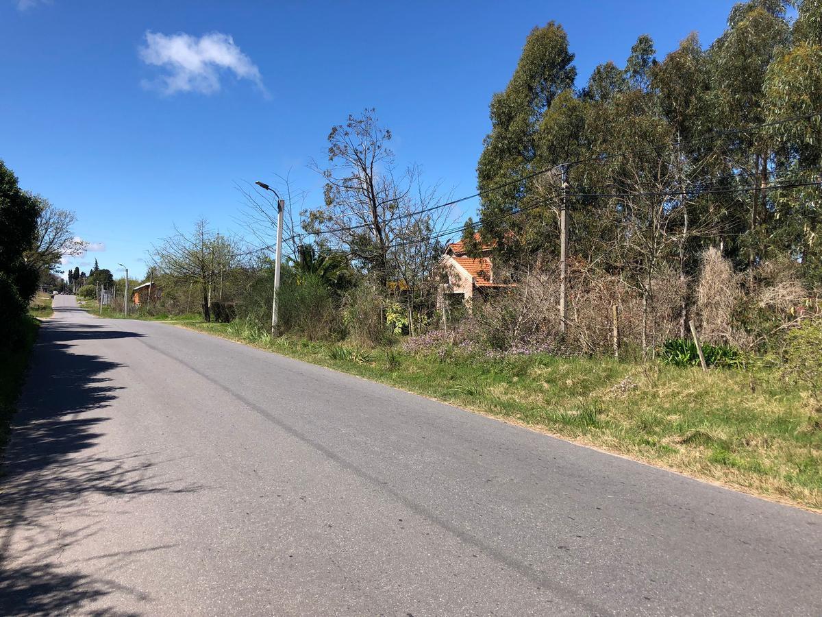 Foto Terreno en Venta en  Colonia del Sacramento ,  Colonia  Manton casi Villamajo. 500m2