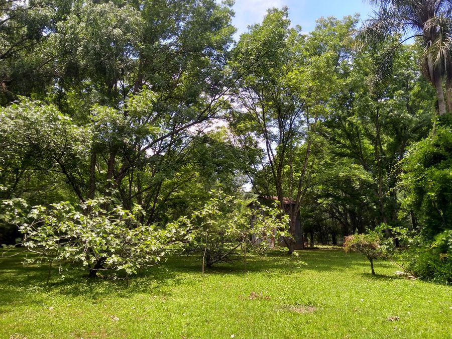 Foto Casa en Venta en  Canal Arana,  Zona Delta San Fernando  Canal Arana Grande Pa