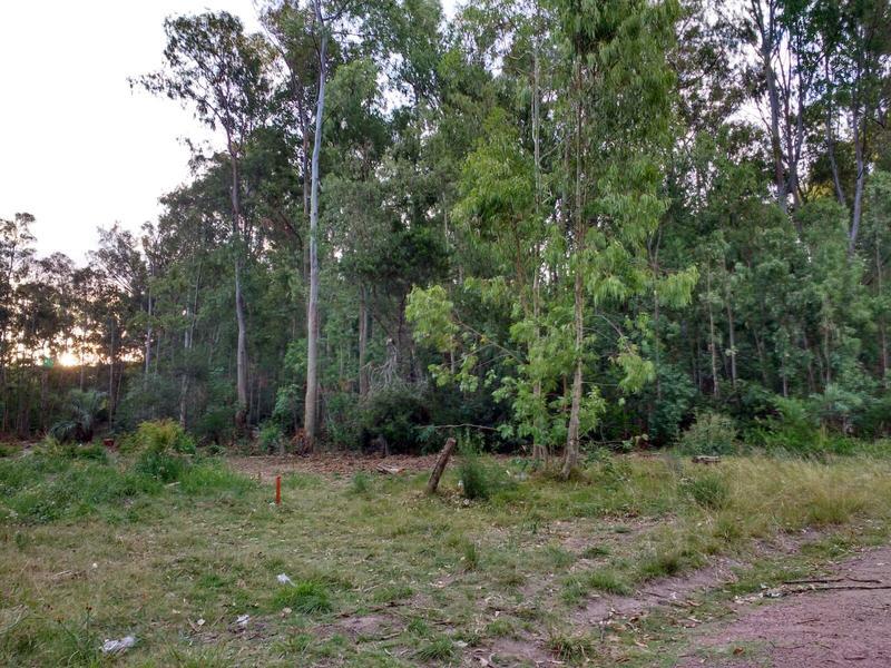 Foto Terreno en Venta en  Colonia Valdense ,  Colonia  SANTA ANA