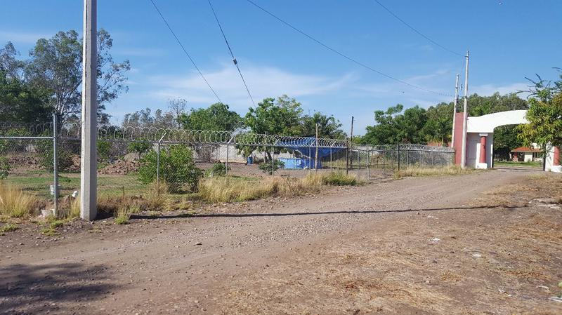 Foto Campo en Venta en  Rancho o rancheria San Pedro,  Navolato  TERRENO CAMPÉSTRE EN VENTA