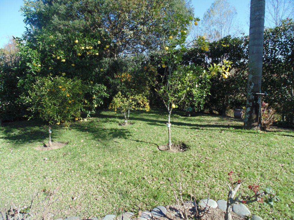 Foto Casa en Venta en  Santa Maria De Tigre,  Countries/B.Cerrado (Tigre)  Av. Santa Maria 6385