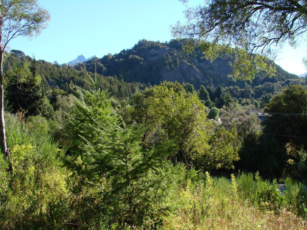 Foto Terreno en Venta en  Bariloche ,  Rio Negro  Av. Bustillo Km 19