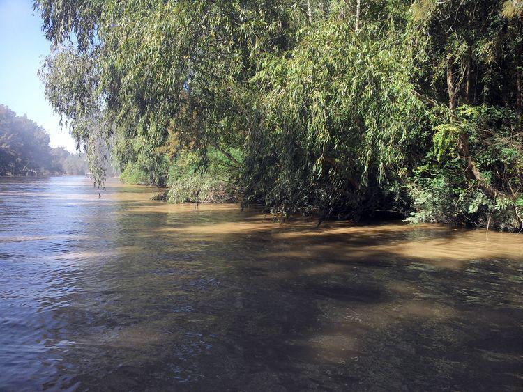Foto Terreno en Venta en  Toro,  Zona Delta Tigre  Toro