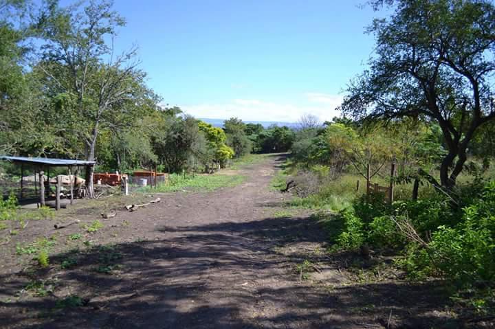 Foto Terreno en Venta en  Villa Pan de Azucar,  Cosquin  Ruta 54