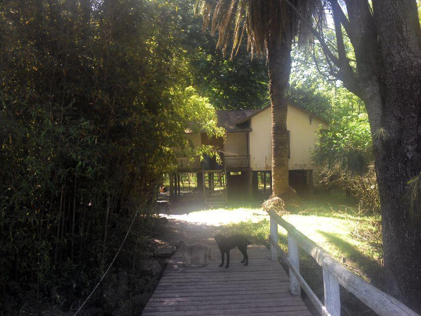 Foto Quinta en Venta en  Canal Arias,  Zona Delta Tigre  Canal Arias Parcela 4 130 metros de frente