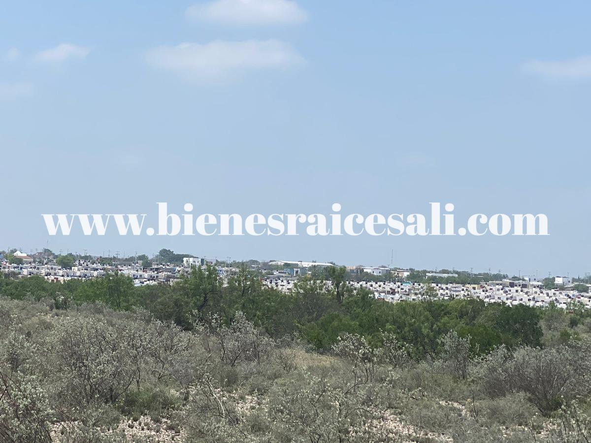 Foto Terreno en Venta en  Piedras Negras ,  Coahuila  19 hectáreas para desarrolladores