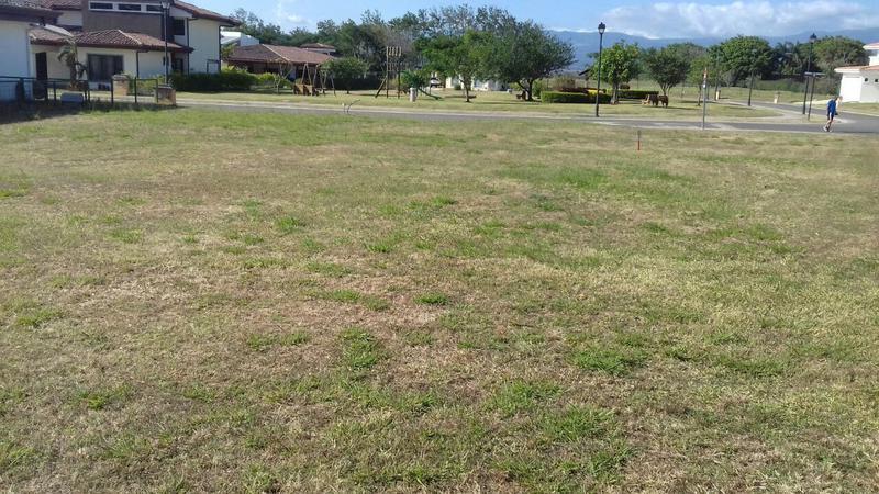 Foto Terreno en Venta en  Guacima,  Alajuela  Terreno completamente plano en Hacienda Los Reyes