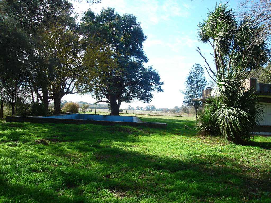 Foto Campo en Venta en  Zarate,  Zarate  15,5 Has. entre Capilla y Zárate