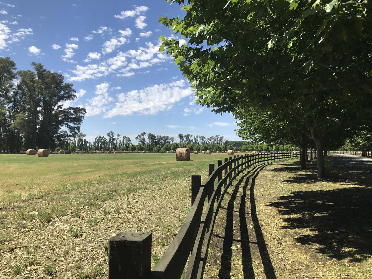 Foto Terreno en Venta en  Countries/B.Cerrado (G. Rodriguez),  General Rodriguez  TechnoPolo Resort & Country Club, Ruta Provincial 28 Km. 3,44