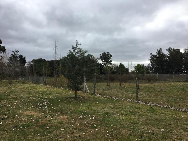 Foto Terreno en Venta en  Villa Elisa,  La Plata  426 entre 140 y 141