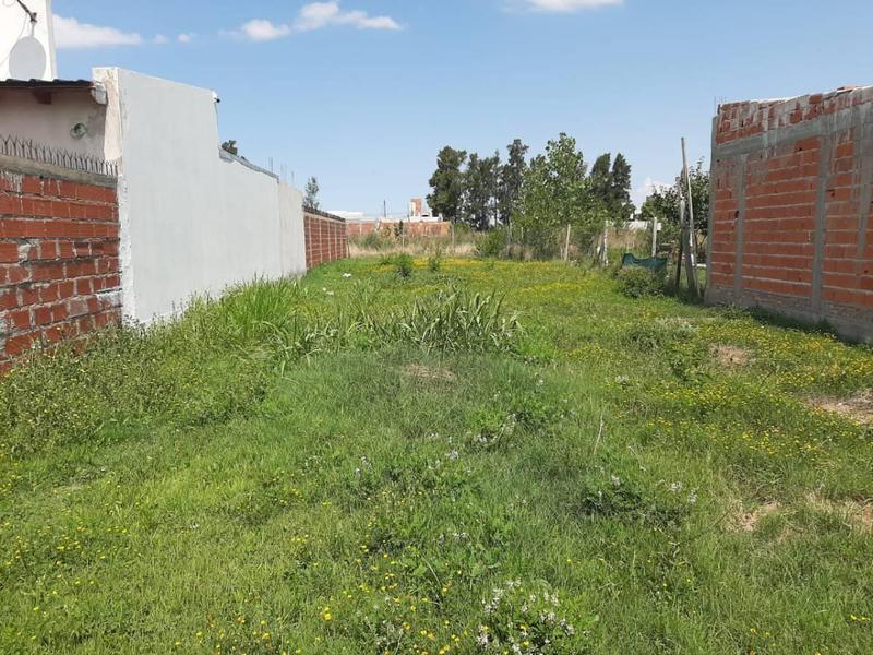 Foto Terreno en Venta en  La Plata ,  G.B.A. Zona Sur  35 E/ 141 y 142