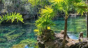 Foto Terreno en Venta en  Boca Paila,  Tulum  Terreno con Cenote Privado en Tulum, sobre Boca Paila