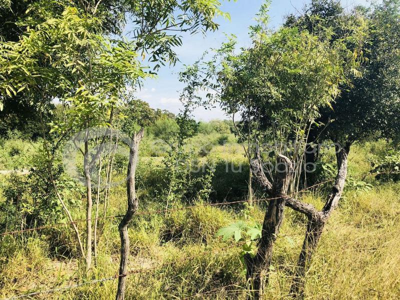 Foto Terreno en Venta en  Pesquería,  Pesquería  TERRENO INDUSTRIAL  EN VENTA PESQUERIA OPORTUNIDAD INVERSIONISTAS