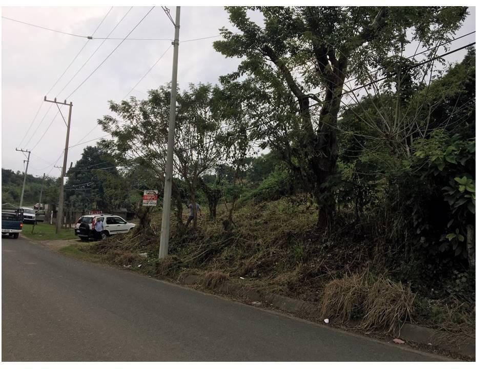 Foto Terreno en Venta en  Ejido Isla de Juana Moza,  Tuxpan   TERRENO EN VENTA EN ESQUINA