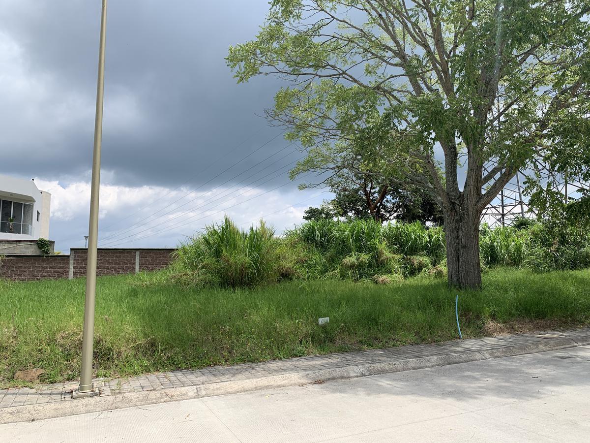 Foto Terreno en Venta en  Fraccionamiento Paseo de la Reina,  Xalapa  Terreno en venta en Xalapa Residencial Paseo de la Reina Animas, al 200