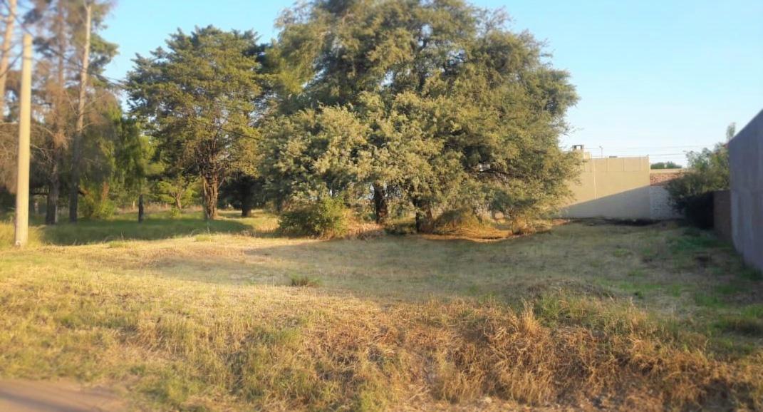 Foto Terreno en Venta en  Santa Rosa,  Capital  Selva y Chopin
