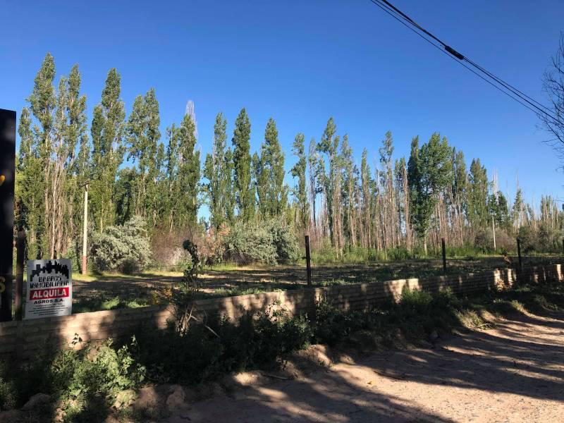 Foto Terreno en Alquiler en  Capital Federal ,  Capital Federal  ex ruta al 200