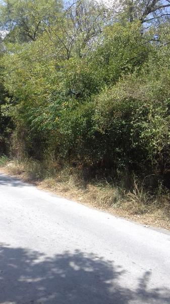 Foto Terreno en Venta en  El Ranchito,  Santiago  TERRENO EN VENTA  EL RANCHITO 8,394.88 M2  SANTIAGO, N.L. $16,000,000
