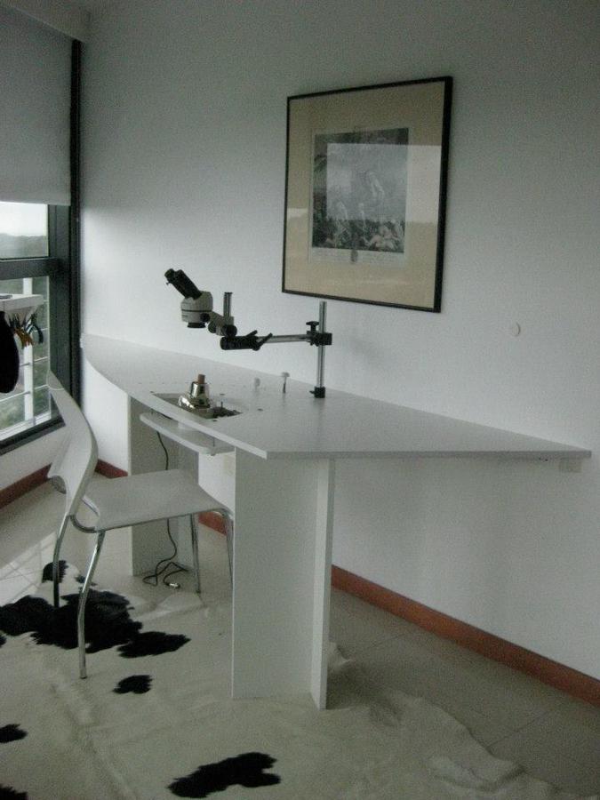 Foto Departamento en Venta en  Punta del Este ,  Maldonado  Torre al 300