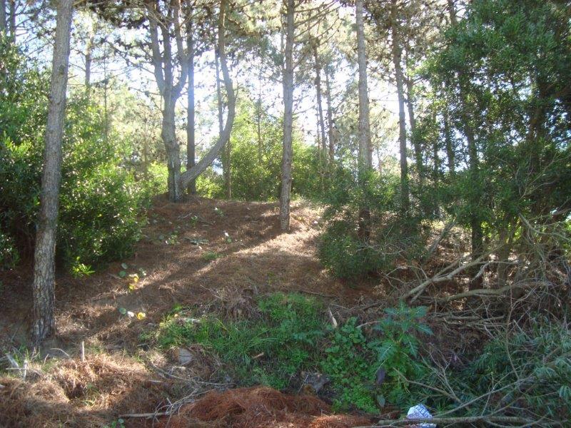 Foto Terreno en Venta en  Pinamar Norte,  Pinamar  Poseidon E/ Selene y Etoneo