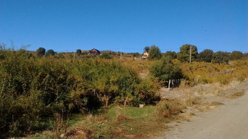 Foto Terreno en Venta en  Cholila,  Cushamen  1/2 ha.Lago Carlos Pellegrini, Cholila