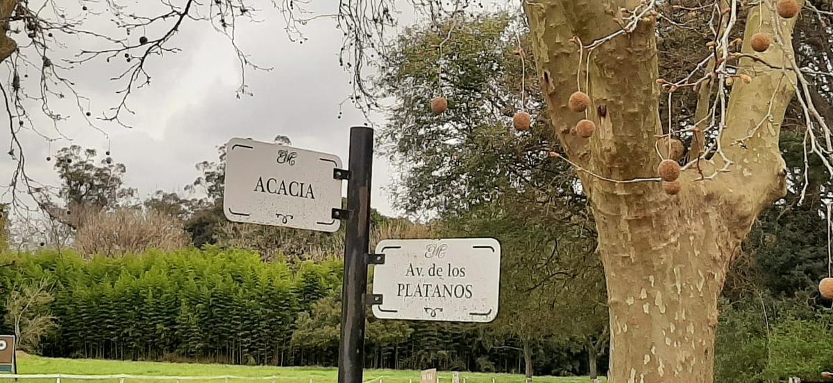Foto Terreno en Venta en  Estancia Villa Maria,  Countries/B.Cerrado (Ezeiza)  RUTA 52 kM. 9.5