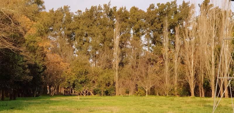 Foto Casa en Venta en  Estancia Benquerencia,  San Miguel Del Monte  Estancia Benquerencia, 318 San Miguel del Monte Buenos Aires
