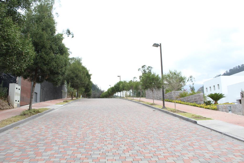 Foto Terreno en Venta en  Cumbayá,  Quito      Lote de 1.007 m2, Cerros de Cumbayá, $315 el m2,  urbanización exclusiva