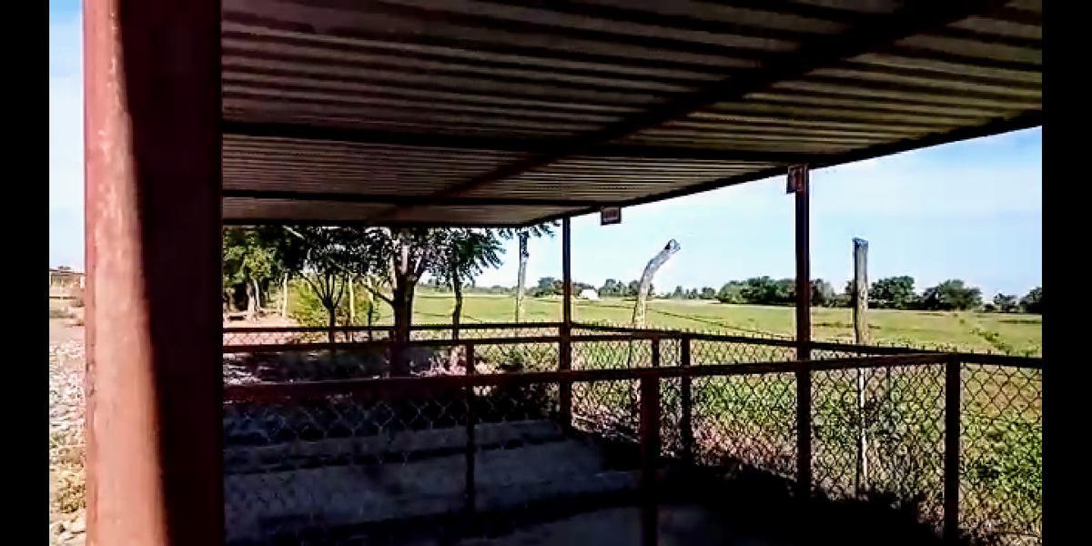 Foto Terreno en Venta en  Poblado comunal San Antonio,  Guasave  PROPIEDAD DE 5 HECTAREAS IDEAL PARA RENCHO CERCA DE TASTE DE LAS SABANILLAS POR CARRETERA LA 100, GUASAVE, SIN.