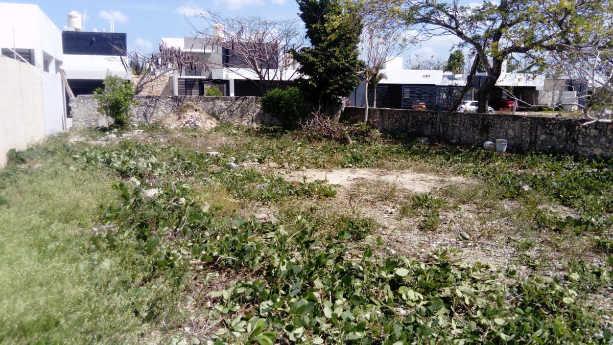 Foto Terreno en Venta en  Pueblo Dzitya,  Mérida  Terreno en Bellavista en Dzitya