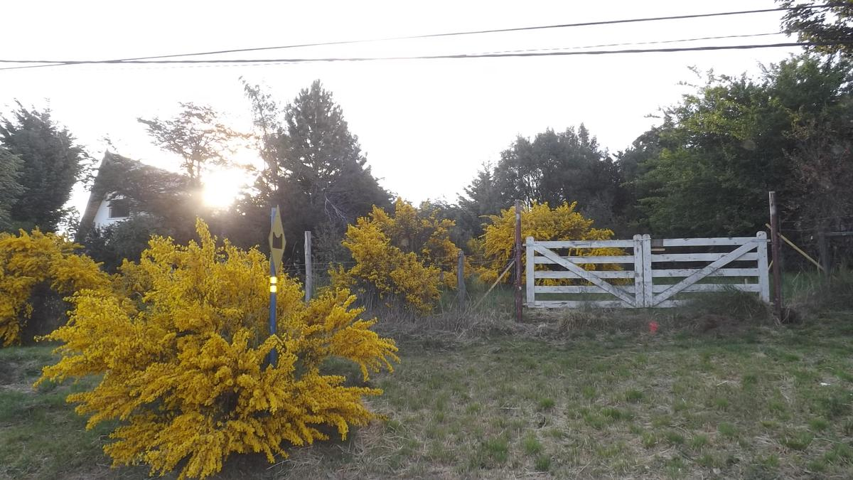 Foto Terreno en Venta en  Jardín Botánico,  San Carlos De Bariloche  Jardin Botánico