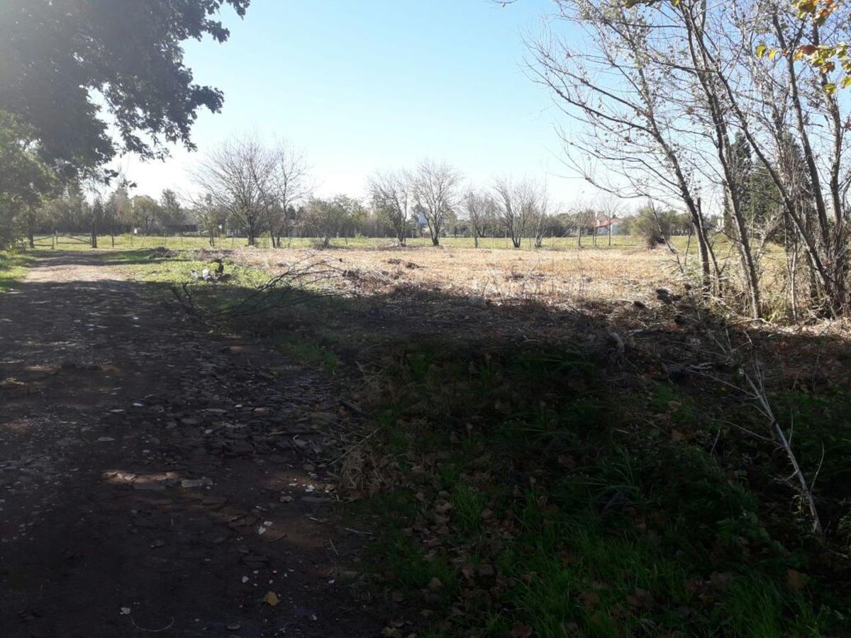 Foto Terreno en Venta en  San Carlos Iii,  Cordoba  Lote en Venta Camino a San Carlos Km 8.5