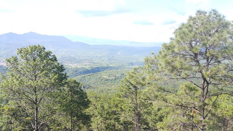 Foto Terreno en Venta en  El Hatillo,  Tegucigalpa  Terreno con Vista Ideal para Circuito Cerrado en el Hatillo, Tegucigalpa