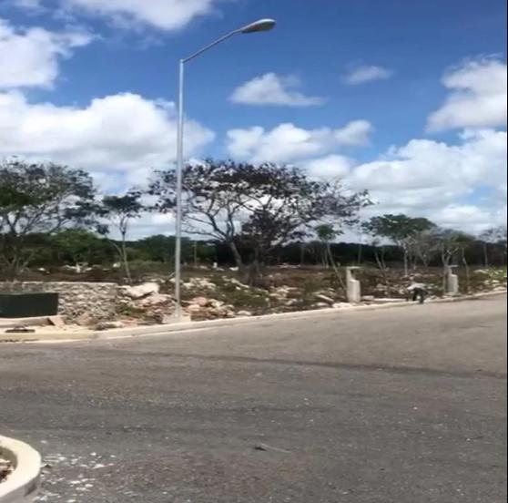 Foto Terreno en Venta en  Conkal ,  Yucatán  Lotes residenciales en venta, con calle pavimentada y agua potable, Conkal.