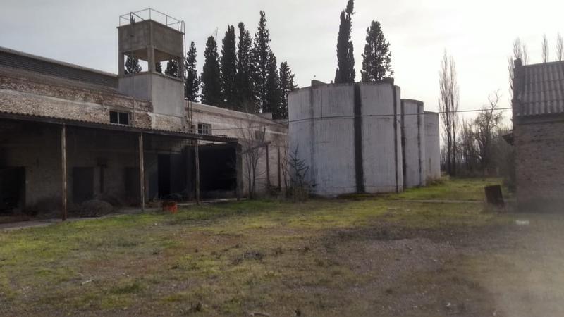 Foto Chacra en Venta en  Villa Regina,  General Roca  BODEGA ZONA CHACRAS REGINA