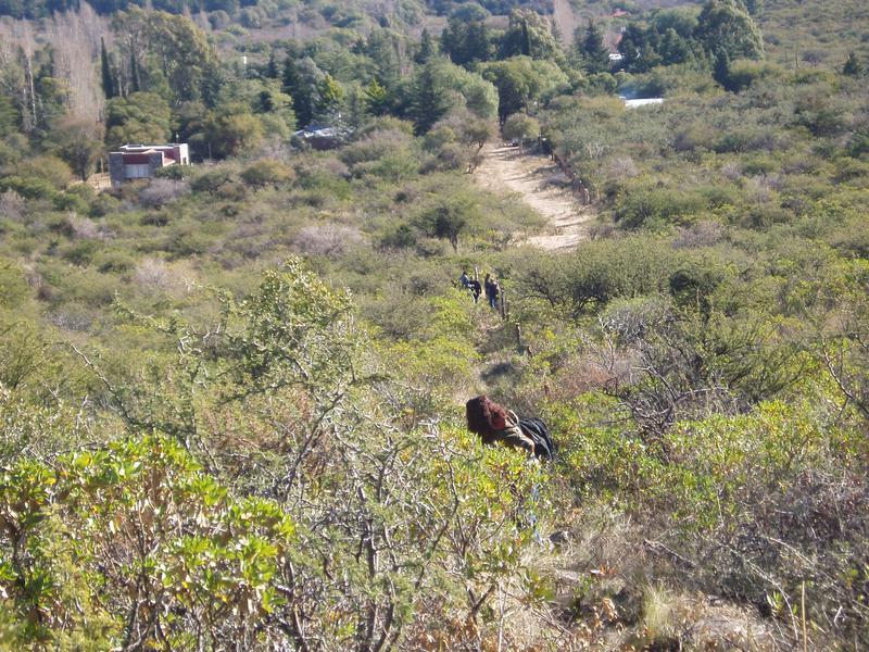 Foto Terreno en Venta en  Cortaderas,  Capital  Cortaderas