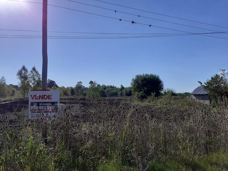 Foto Terreno en Venta en  Nueva Palmira ,  Colonia  Variedad de TERRENOS en Nueva Palmira