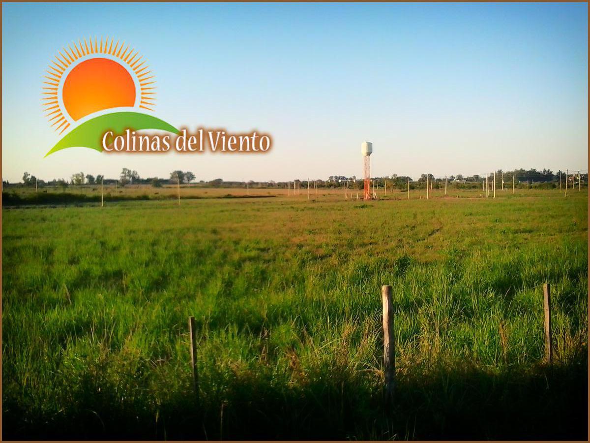 Foto Terreno en Venta en  Ejido Colon,  Colon  Colinas Del Viento