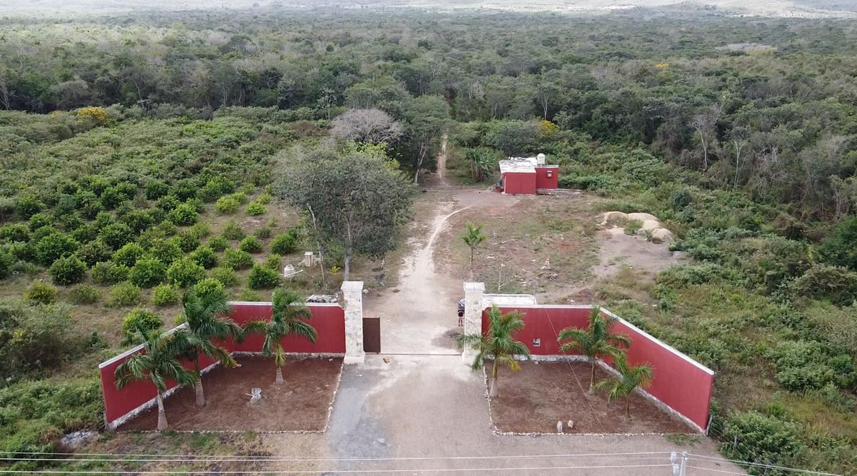 Foto Terreno en Venta en  Pueblo Oxkutzcab,  Oxkutzcab  OXKUTZCAB