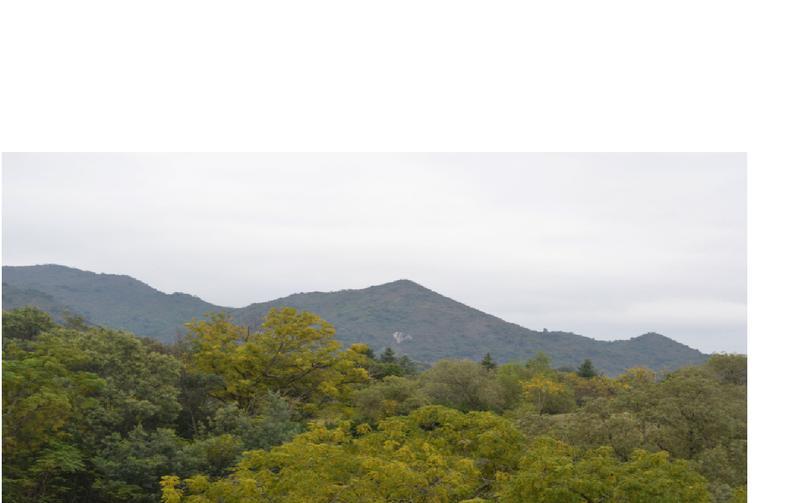 Foto Terreno en Venta en  Alta Gracia,  Santa Maria  Potrerillo de Larreta