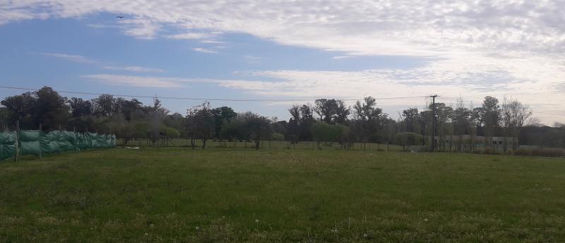 Foto Terreno en Venta en  San Roque,  Countries/B.Cerrado (Lujan)      Comarcas De Lujan  San Roque #38