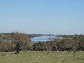 Foto Campo en Venta en  Otras ,  Paysandú  Muy buen campo agrícola de 130 hás en venta con costa al río Queguay en Paysandú.