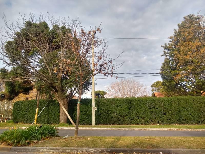 Foto Terreno en Venta en  Bella Vista,  San Miguel  Bella Vista