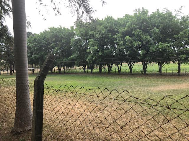 Foto Quinta en Venta en  Villeta ,  Central  Zona Villeta