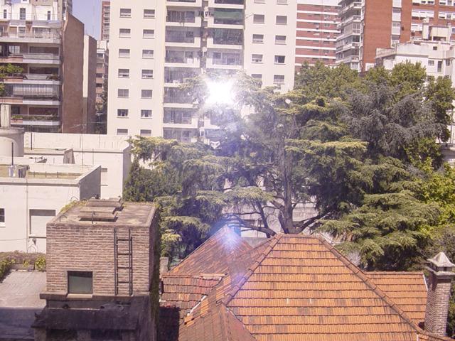 Foto Departamento en Alquiler en  Belgrano ,  Capital Federal  zapiola 2100