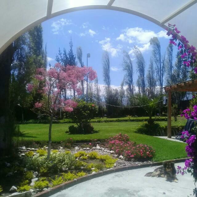Foto Casa en Venta en  El Quinche,  Quito  El Quinche