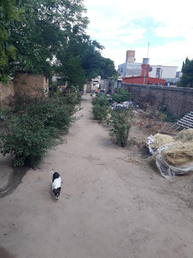 Foto Terreno en Venta en  Pueblo Sarmiento,  San Alberto  9 de Julio al al 200