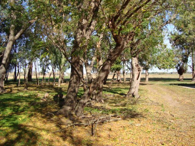 Foto Campo en Venta en  Capilla Del Señor,  Exaltacion De La Cruz  60 Has.  Aptas Emprendimiento Urbanistico