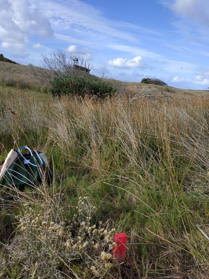Foto Terreno en Venta en  Cabo Polonio ,  Rocha  Balneario Atlántica cerquita Del Cabo